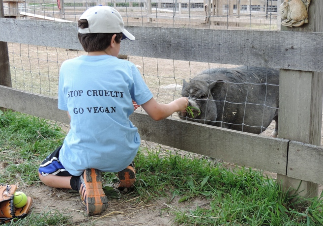 Noah feeding piggie with vegan shirt