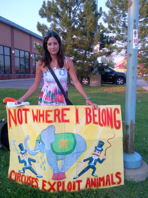 circus protest aug 2012